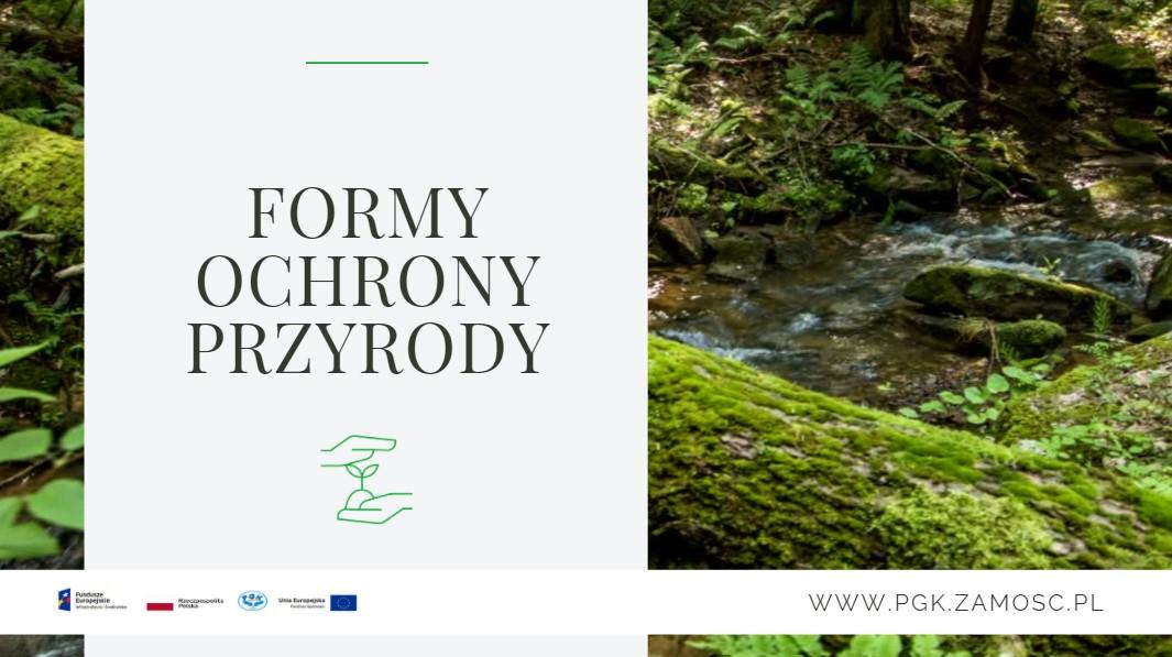 Formy ochrony przyrody – parki, rezerwaty, pomniki przyrody